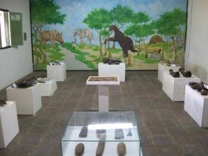 Em seu rico acervo, o museu reúne fósseis de animais extintos há mais de 10 mil anos, além de instrumentos de pedra polida usados antigamente e peças históricas vindas do litoral paraibano (Foto: Divulgação)